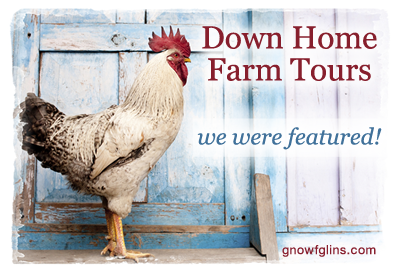 down-home-farm-tour-400-featured-flat